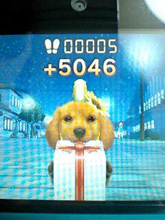 3DSの任天堂犬みたいにプレゼントくわえて